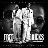 Free Bricks (With Future)