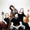 Vitamin String Quartet