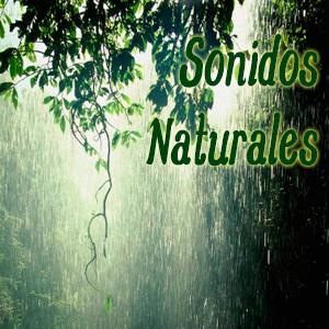 Sonidos Naturales