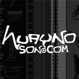 www.huaynoson.com