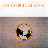 Catch Bull At Four