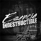 Esencia indestructible