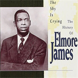 The Sky Is Crying The History of Elmore James