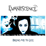 Bring Me To Life (Album Version)