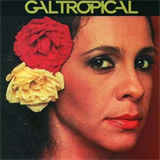 Gal Tropical