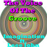 The Voice Of The Groove