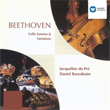 Beethoven Cello Sonatas & Variations