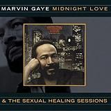 Sexual Healing [Original Vocal Version]