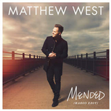 Mended (Radio Edit) (Single)
