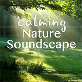 Calming Nature Soundscape