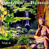 Buddha and Bonsai IV