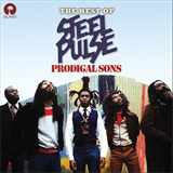 Prodigal Sons The Best of Steel Pulse