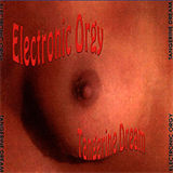Electronic Orgy