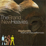 Elephantitis - The Funk And House Remixes