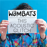 This Acoustic Glitch